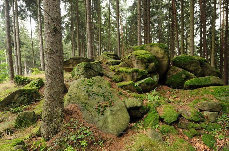 Kudy z nudy - Venušiny misky na Smolném vrchu