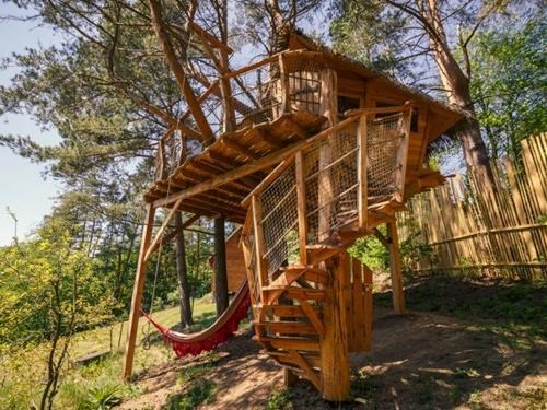 Tree house Stvořidla