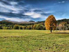 Z Kvildy k pramenům Vltavy, na Bučinu a Knížecí pláně