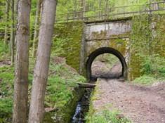 Z Hradce nad Moravicí do lesů kolem plavebního kanálu