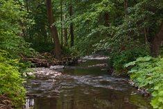 Přírodní park Údolí Křetínky u Svojanova