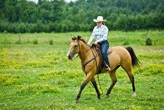 Putování na koních krásnou krajinou