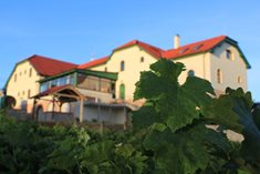Hotel Vinohrad - vychutnejte si krásy jižní Moravy