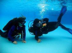 Ochutnávky potápění v bazénu nebo ve volné vodě