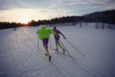 Ski areál Umbule - lyžařské středisko Letohrad