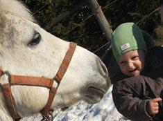 Jezdecká škola Amír - koně pro děti