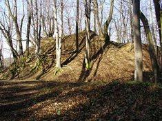Zřícenina hradu Svrčov
