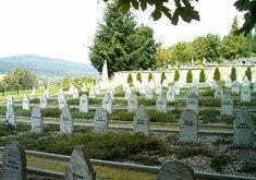 Židovský hřbitov ve Volarech