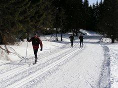 Krušné hory na běžkách - z Komáří hůrky na Cínovec