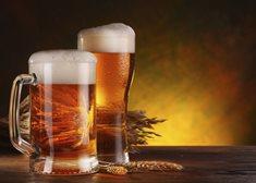 Za historií piva se vypravte do Plzně