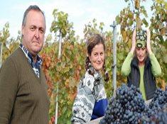 Víno Hruška - víno, které chutná