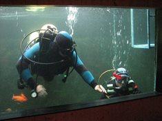 Potápěčské exkurze v akváriu Džbánov