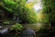 Řeka Rokytná - pravostranný přítok Jihlavy
