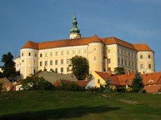 Bohatství jižní Moravy: Venuše za 40 milionů dolarů a mikulovské víno