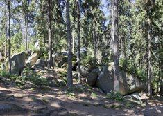 Přírodní rezervace Choustník
