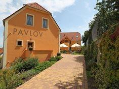Hotel Pavlov - místo pro aktivní dovolenou