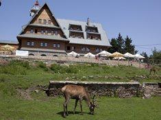Kramářova chata na Suchém vrchu - legenda Orlických hor