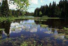 Dům přírody na Kladské - informační brána do Slavkovského lesa